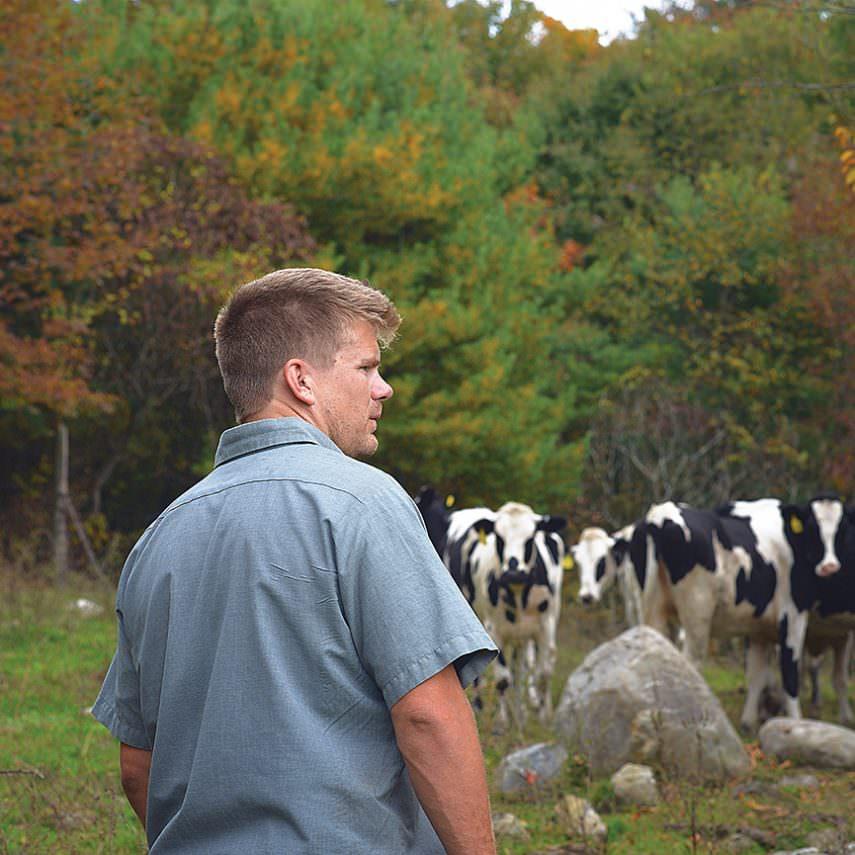 Seth McEachron monitoring heard of dairy cows