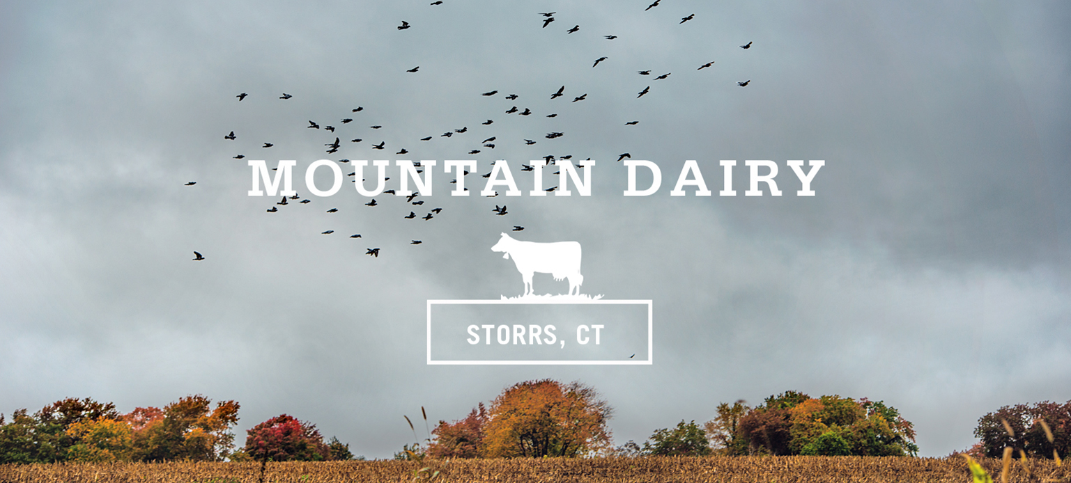 Mountain Dairy - Storrs, CT