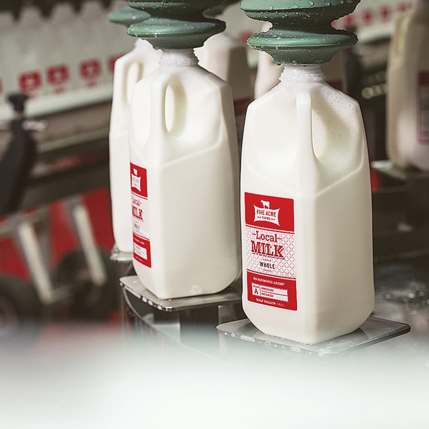 Five Acre Farms whole milk on the bottling line.